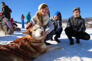 zimowisko-husky